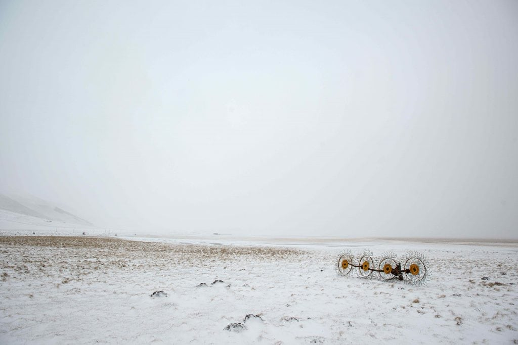 A day of landscape photography: the blizzard